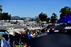 Low Res AGT Crowd 1 Townsville